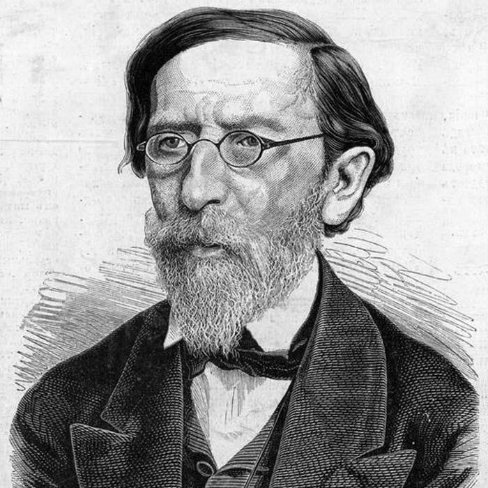 Михайло Максимович, 1876 рік